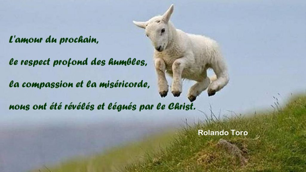 Christ citation Rolando Toro