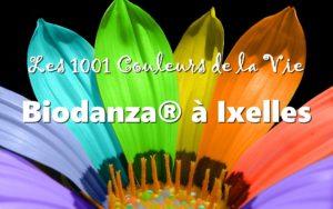 Cours Biodanza Ixelles 2019 - 2020